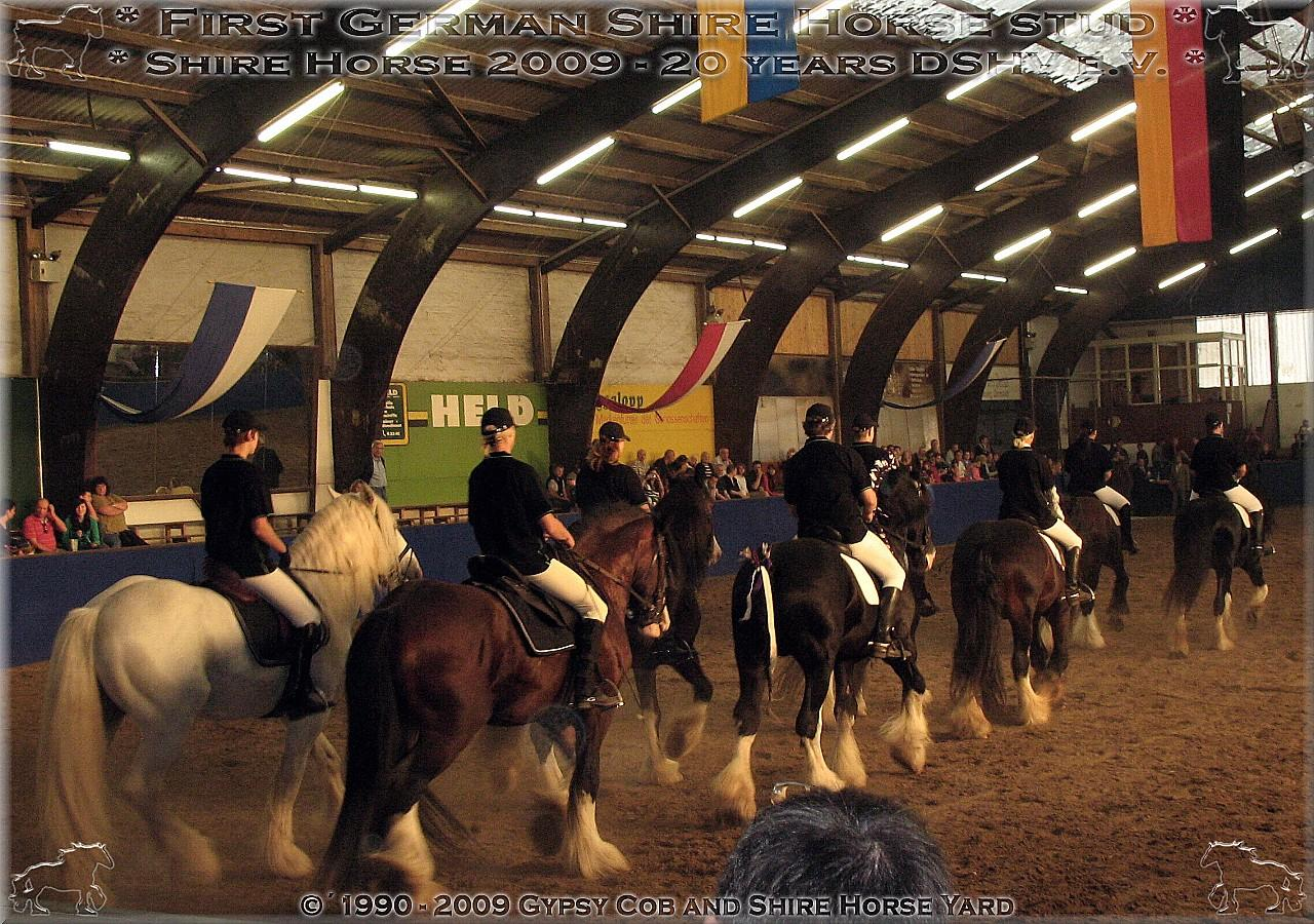 German Shire Horse club of 20 years - show event Darmstadt - quatrille