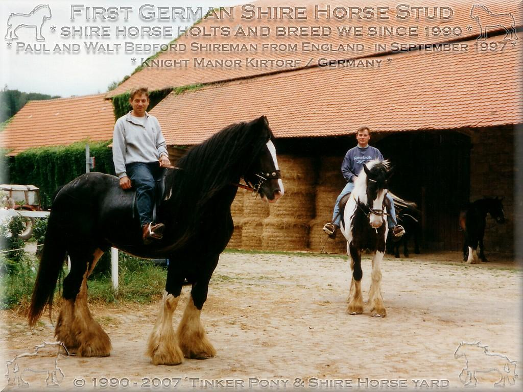 In the Slideshow you can yourself, with 20 photo of the 1. Weekend into the September of 1997, a picture of the unique Shire Horse gelding KRAEMERS MUEHLE HAPPY JACK does
