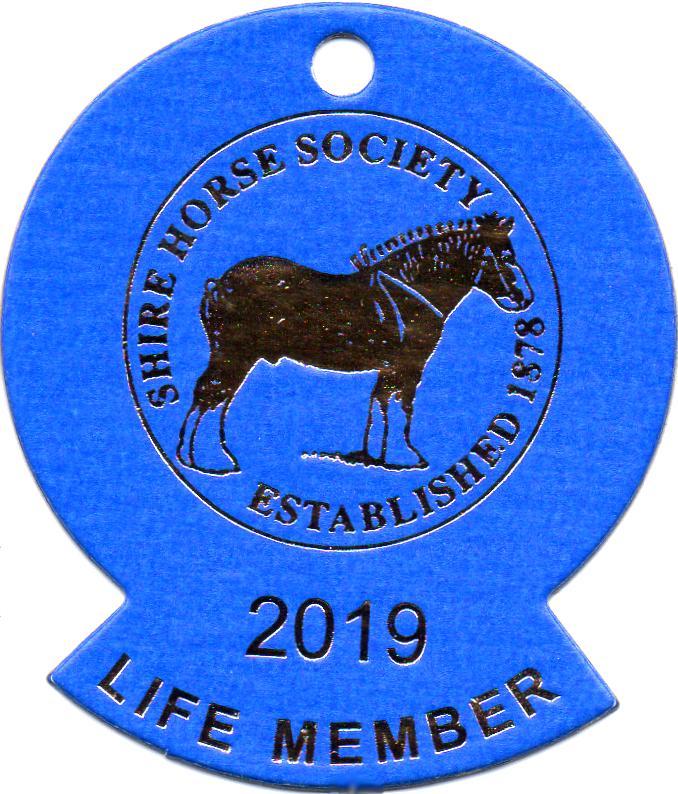 Herzlich Willkommen auf dem Tinker Pony & Shire Horse Hof - Shire Horse, Shire Horse Hof, Shire Horse Haltung, Shire Horse Zucht seit 1990