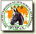 Heartily welcome on the Tinker pony & Shire Horse yard - Link to the German ILPH